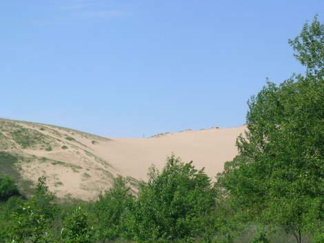 Sand_dune_surprise