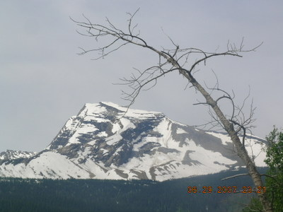 Glacier_national_park_62907_50_2