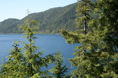 Olympic_peninsula_crescent_lake_rub
