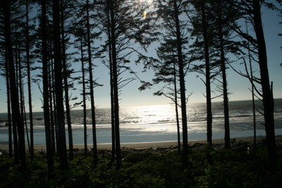 Olympic_peninsula_crescent_lake_r_3